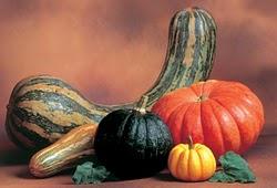 legumes - saudáveis fontes de fibra