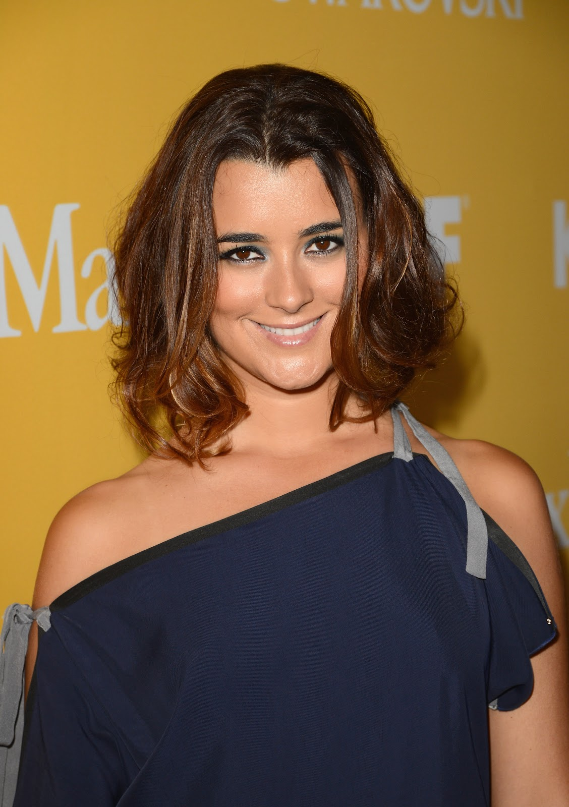 cote de pablo 2012 women in film crystal and lucy awards sexy leg cross. Black Bedroom Furniture Sets. Home Design Ideas