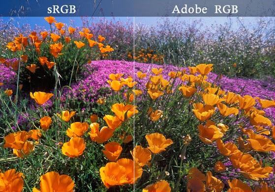 المساحة اللونية srgb vs adobe rgb