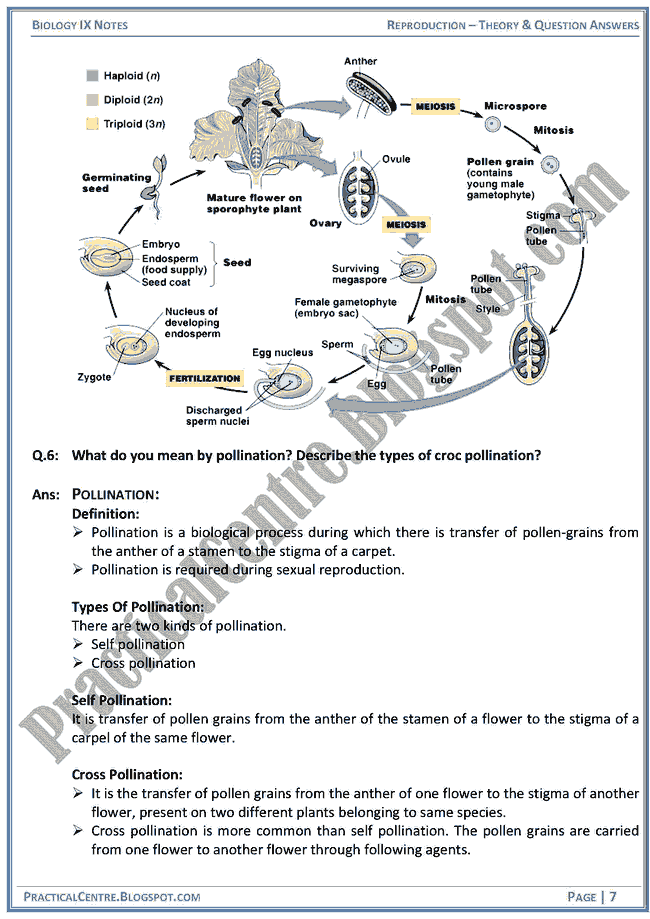 reproduction-theory-and-question-answers-biology-ix