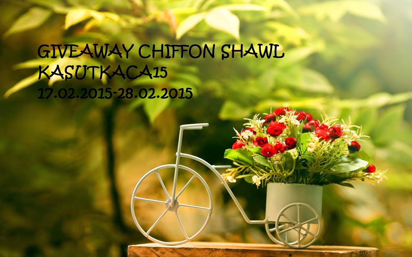 KASUTKACA15 GA: CHIFFON SHAWL