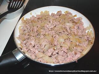 cebolla pochada con carne de pollo picada