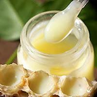 Sữa ong chúa mua ở đâu tại TPHCM