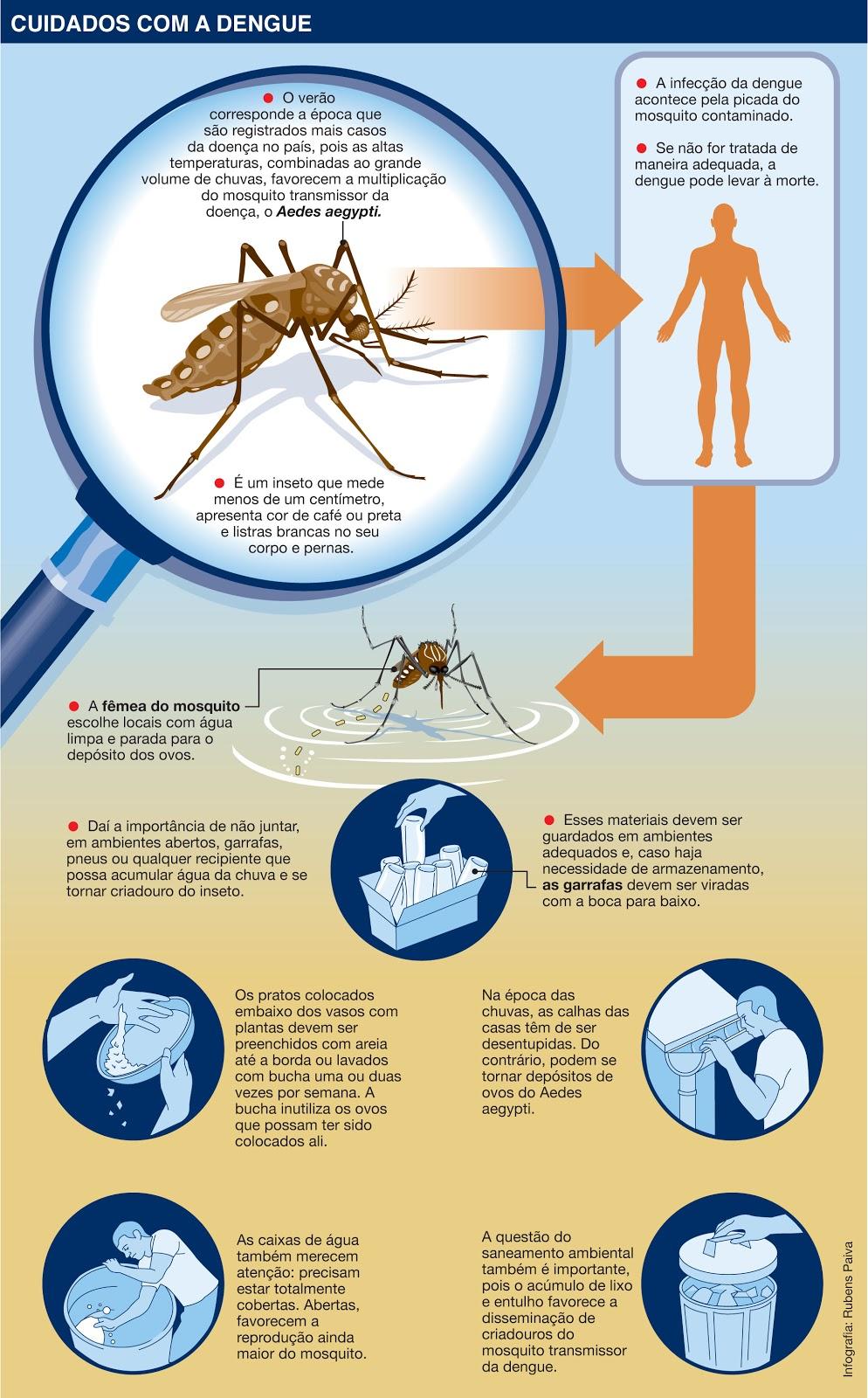 Portal Trabalho Seguro: O que é Dengue?