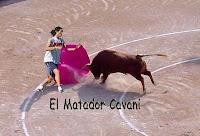 matador-cavani