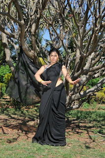 WWW.BOLLYM.BLOGSPOT.COM Actress Sunakshi Spicy  Saree  Picture Pic Stills Gallery 0022.jpg