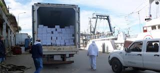 El Servicio Nacional de Sanidad y Calidad Agroalimentaria (Senasa) decomisó 1143 cajas de merluza en filetes sin piel, las cuales iban a ser exportadas a Brasil desde el puerto de Mar del Plata