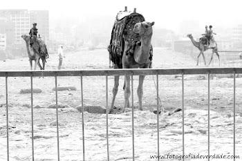 Egito, uma terra de mistério.