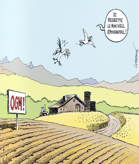 Mieux pr venir la suisse s 39 est prononc e en faveur de la for Conseil sur les plantes
