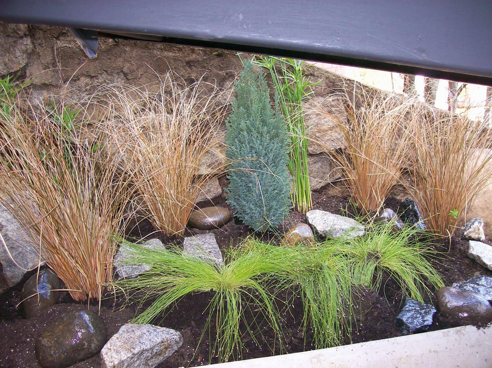 for Jardin zen exterior