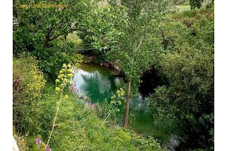 turismo-rural-el-burgo-malaga-acequia-del-molino