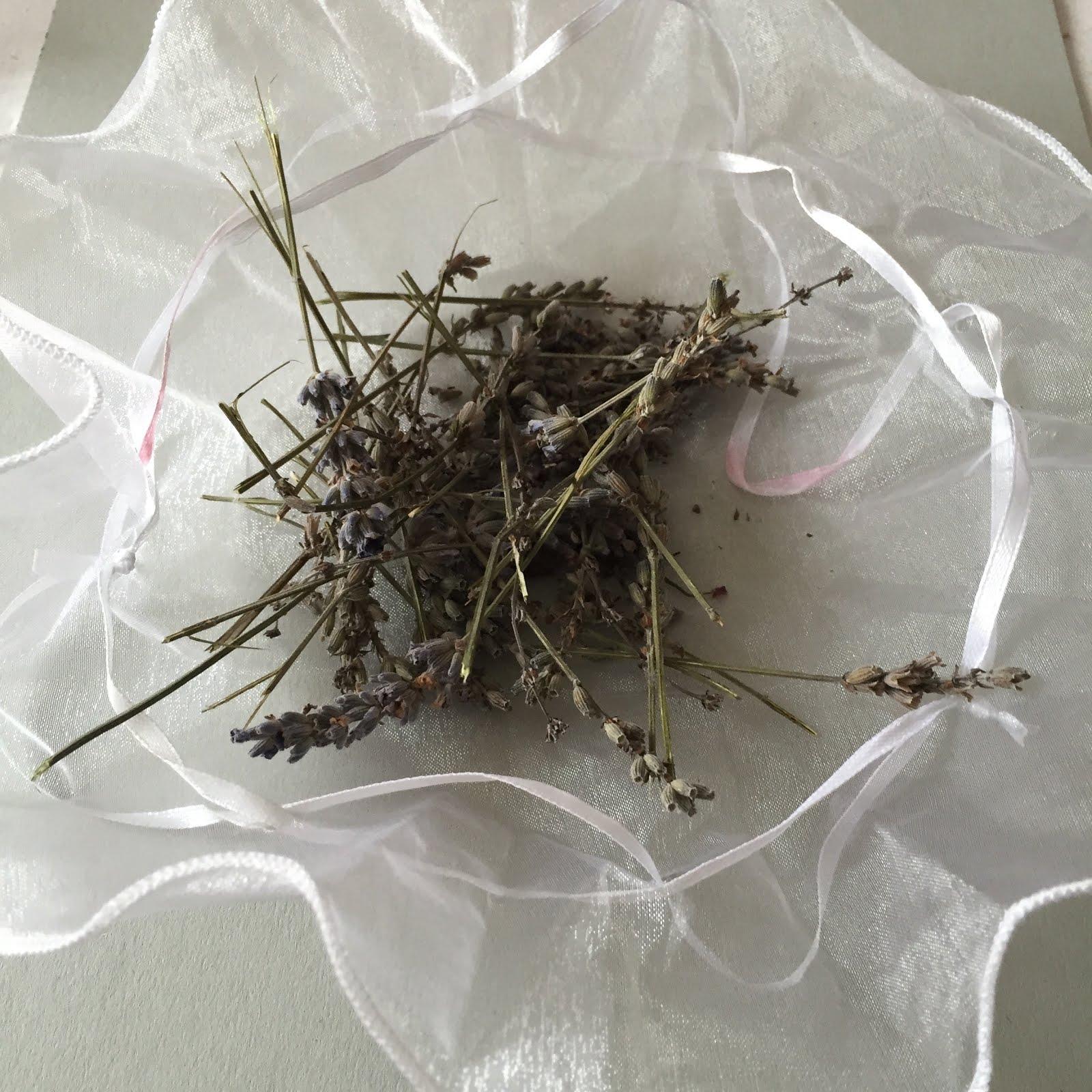 Cr er pour grandir sachet d 39 odeur dans le sapin - Odeur de sapin dans la maison ...
