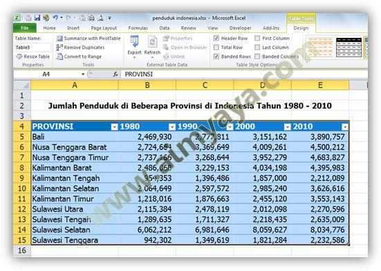 Gambar: Tabel Baru di Microsoft Excel