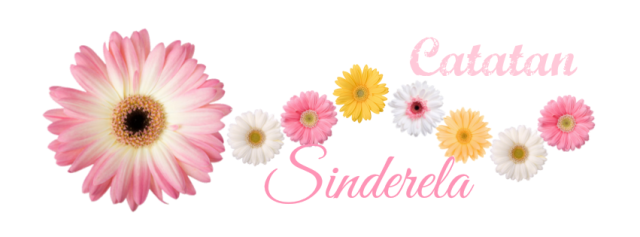 Catatan Sinderela