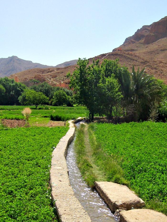 berber farm, morocco landscape, berber rug