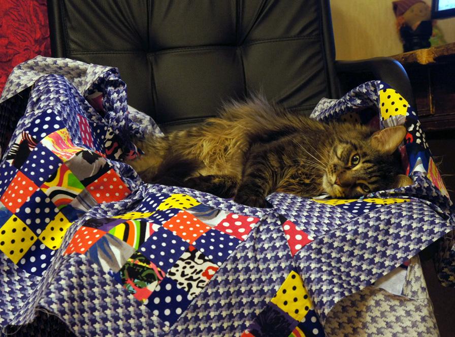 одеяло пэчворк мейнкун