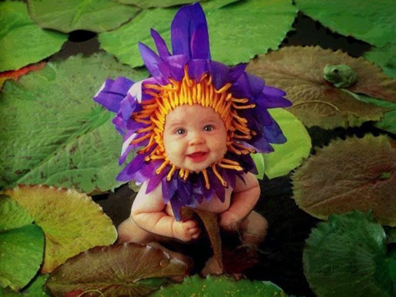 cute-flower-or-baby-wallpaper