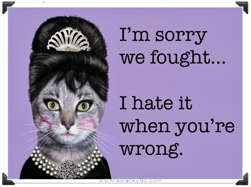 fancy cat with cattitude, I'm sorry we fought... I hate it when you're wrong. #cattitude