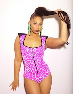 PINK GIRAFE BODY
