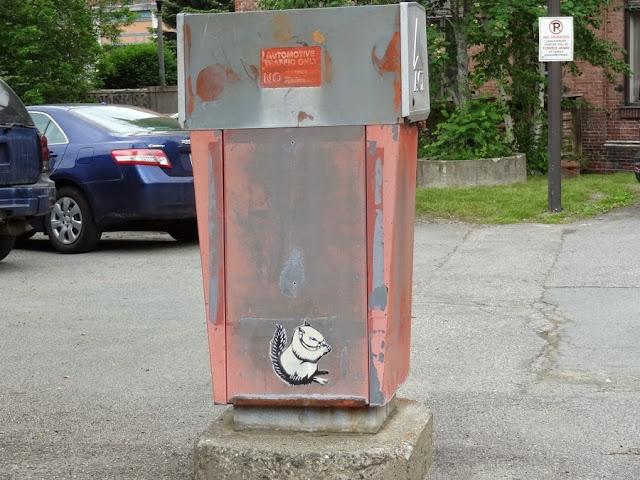 squirrel,wheatpaste,bangor maine,graffiti art,downtown