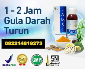 obat diabetes tradisional ampuh