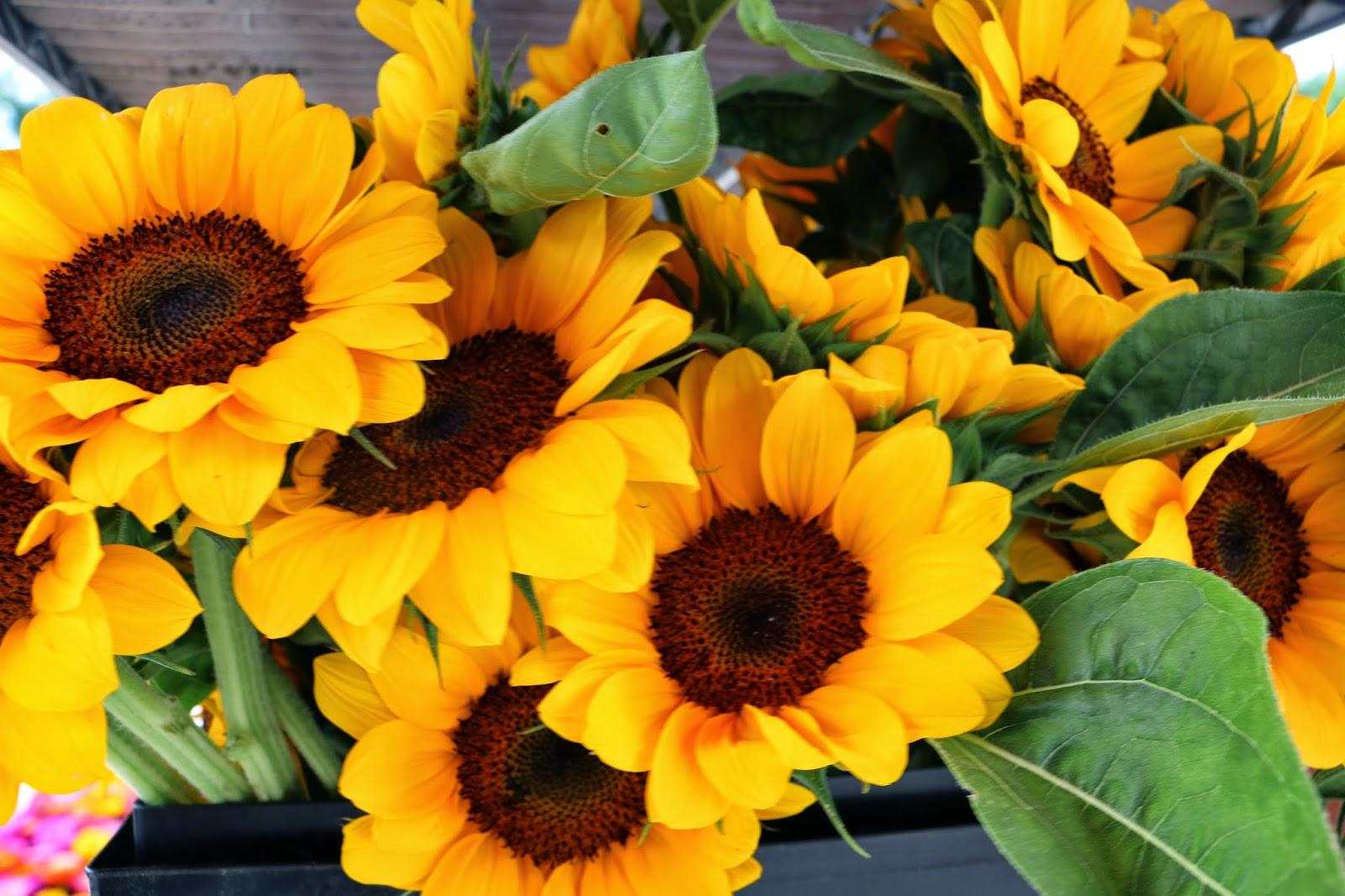 Food & Friends Minute Random Acts of Flowers Sweet Virginia Donates Flo
