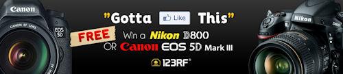 Gánate una cámara Nikon D800 ó una hermosa Canon EOS 5D Mark III con www.123RF.com