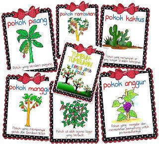 20 jenis pokok tumbuh-tumbuhan