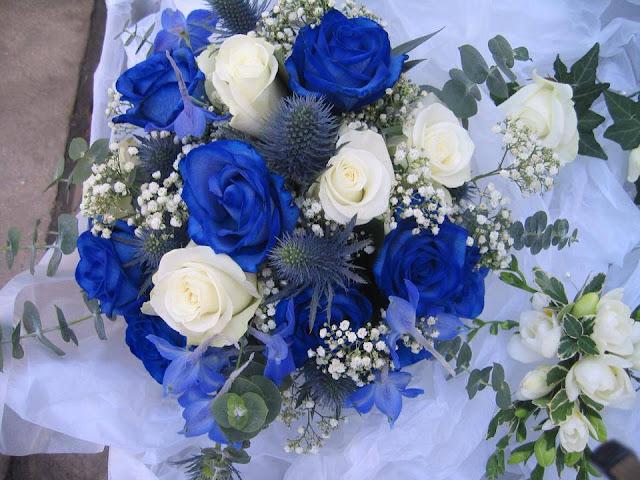 Ảnh đẹp hoa hồng xanh