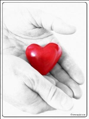 imágenes románticas con corazon