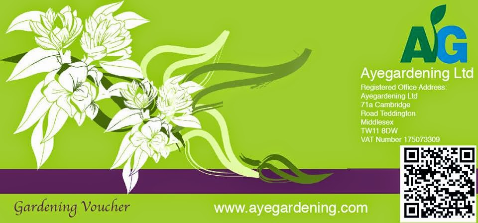 Gardening and landscaping voucher in Dorking