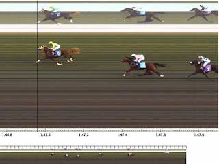 ayabakan yarış atı