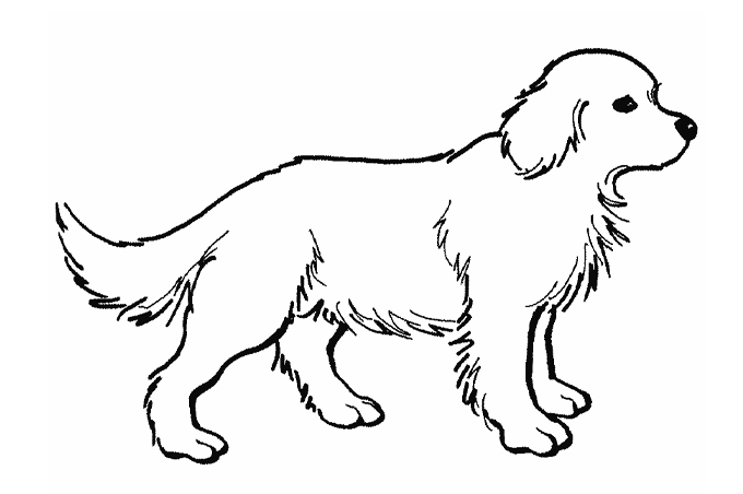 Photo Album Crayon Vicious Animals For on Antelope Coloring Pages
