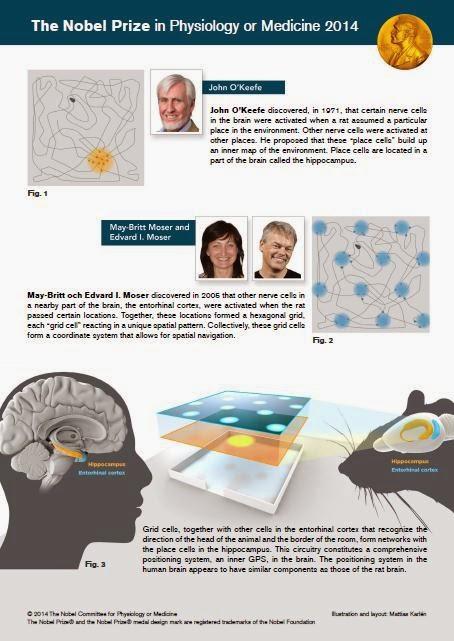 http://www.nobelprize.org/nobel_prizes/medicine/laureates/2014/med_image_press_eng.pdf