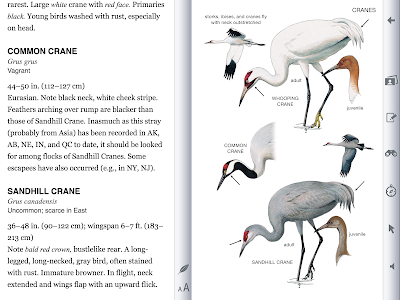The Cranes Page from the iOS Peterson Birds Guide
