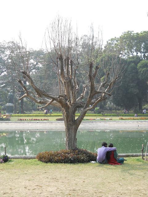Парк в Калькутте. По газонам можно ходить