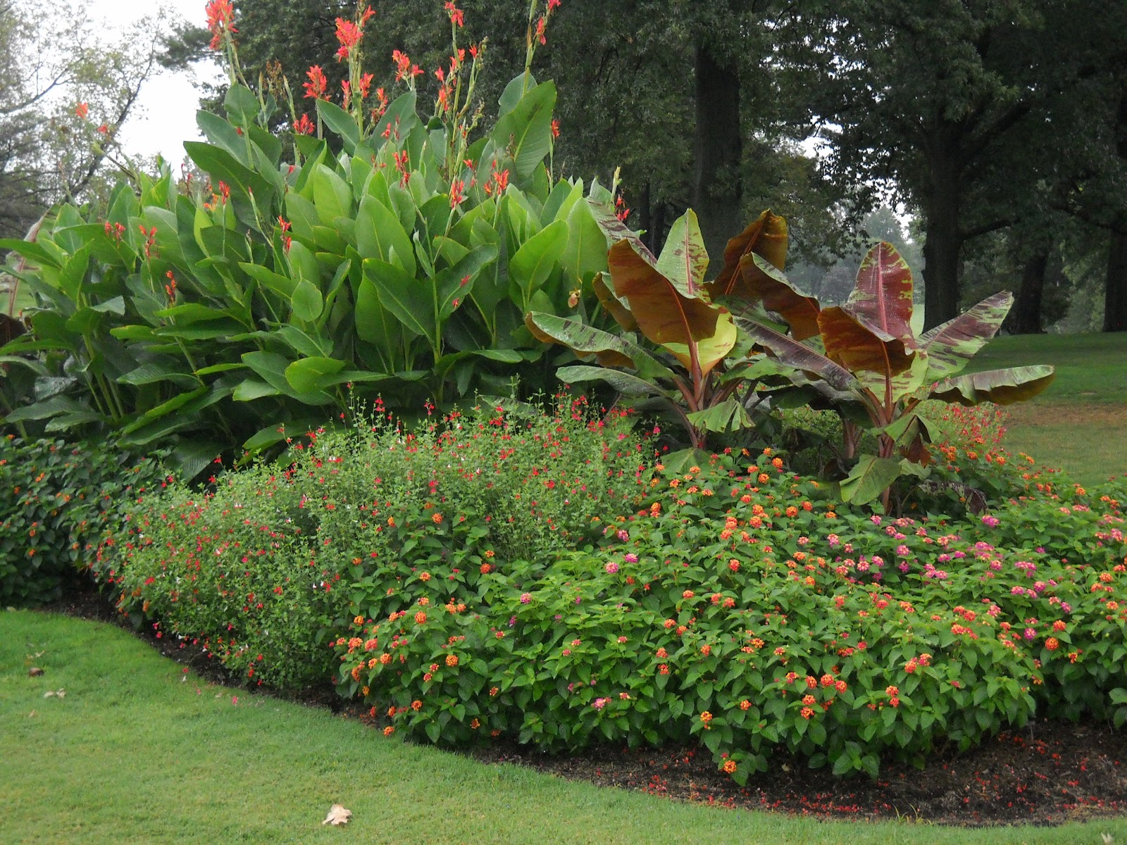 Glen echo country club golf course management for Ornamental trees for flower beds