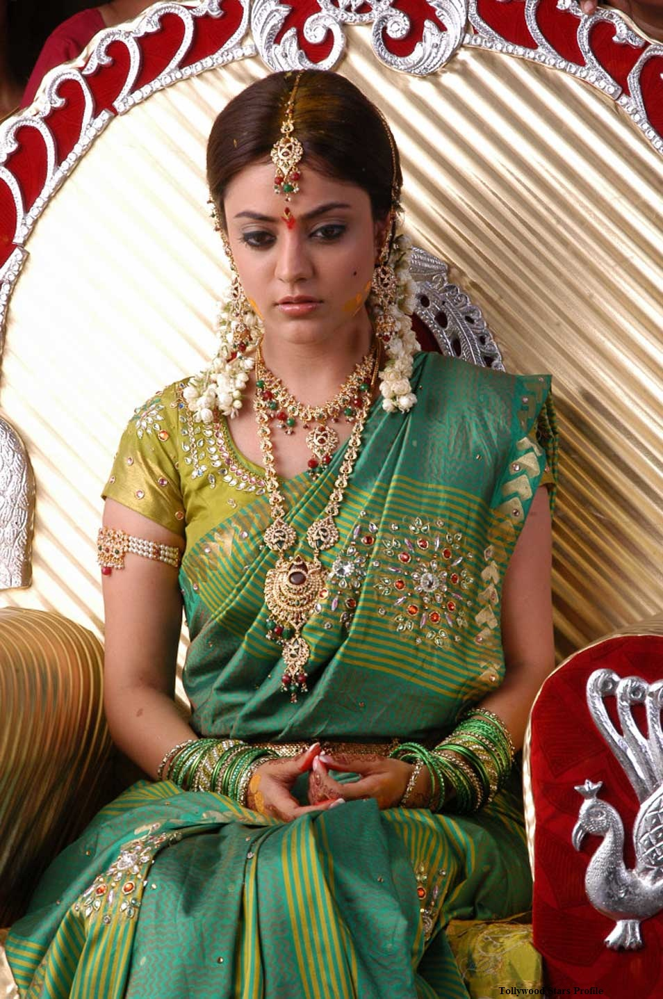 Nisha Agarwal Cute Saree Photo Gallery Nisha Agarwal