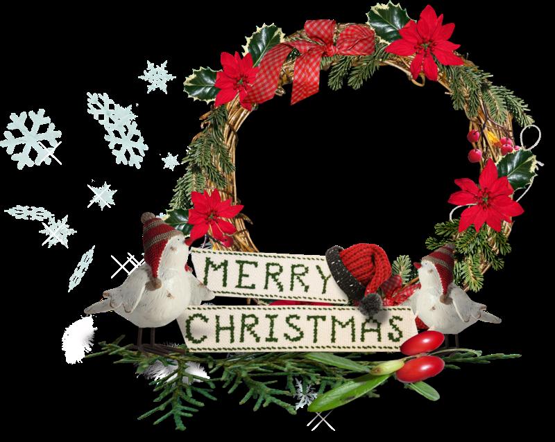 ForgetMeNot: Christmas Flowers Poinsettia frames