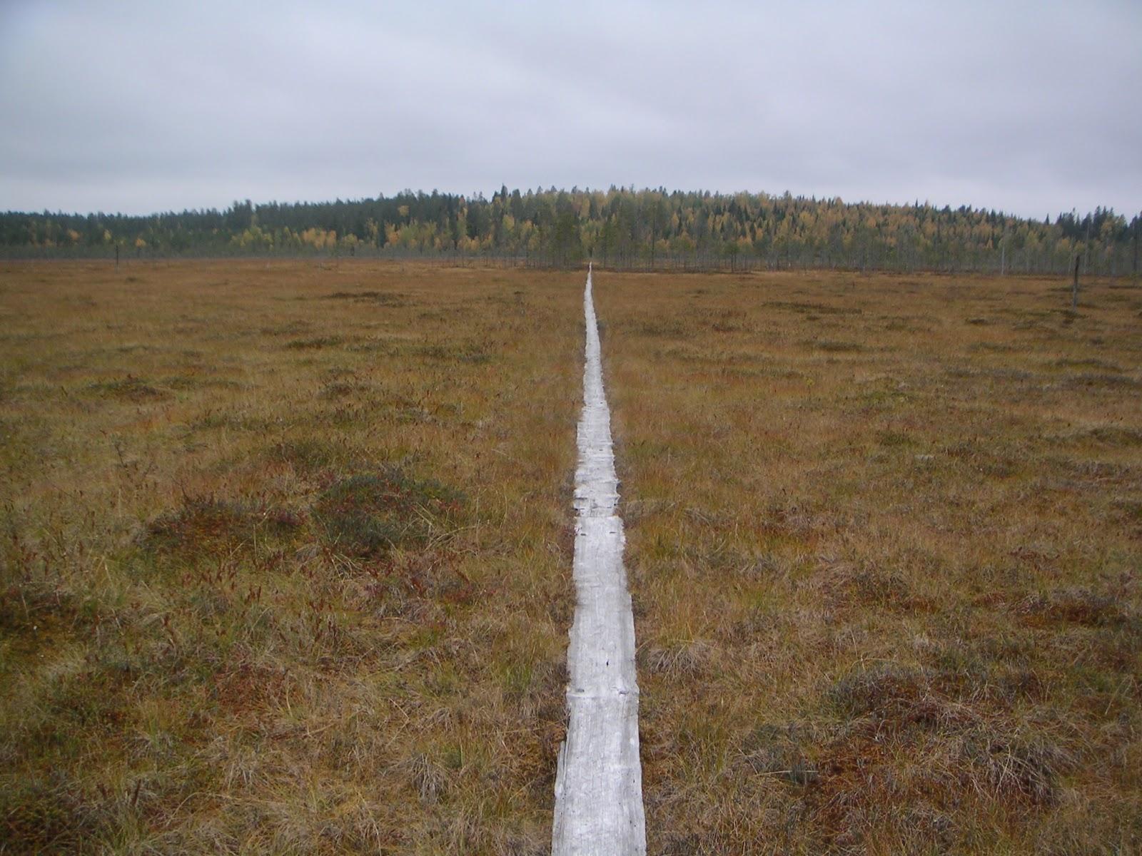 Patvinsuo-2005-09