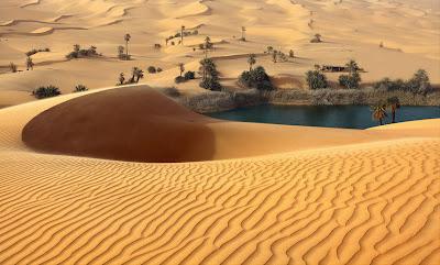 Oasis en Libia - Oasis Libya by Victoria Rogotneva