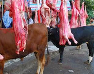 اللحوم البلدى