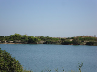 Beautiful lake photo nearest La Devesa Beach - Valencia - spain