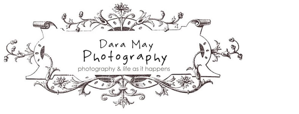 Dara May Photography