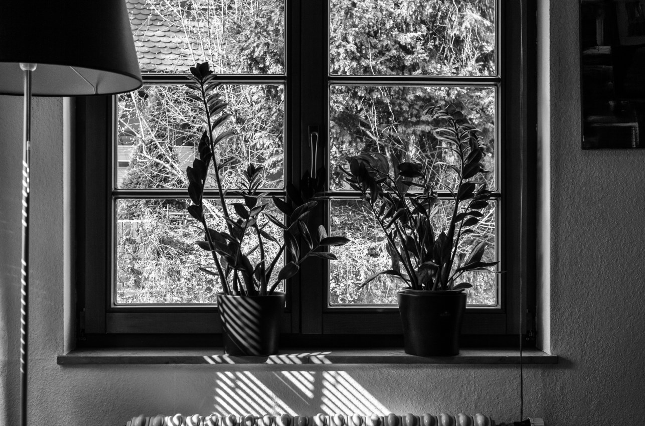 Matthew G. Beall vision driven black and white  Photography   My Living Room Window   2014