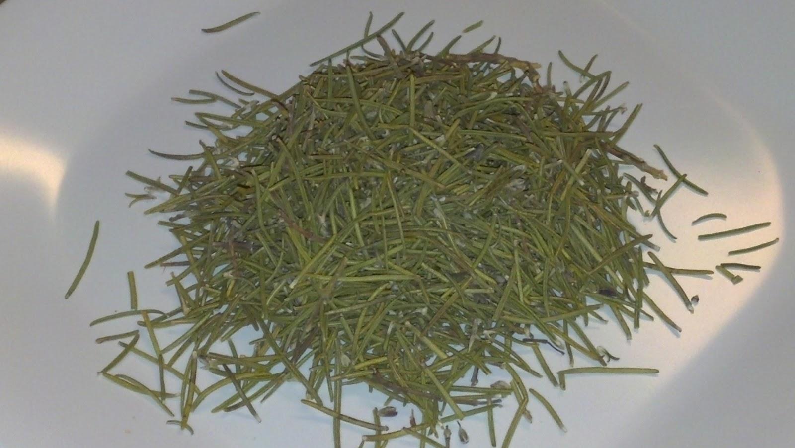 Back to the Basics!: Health Benefits of Rosemary