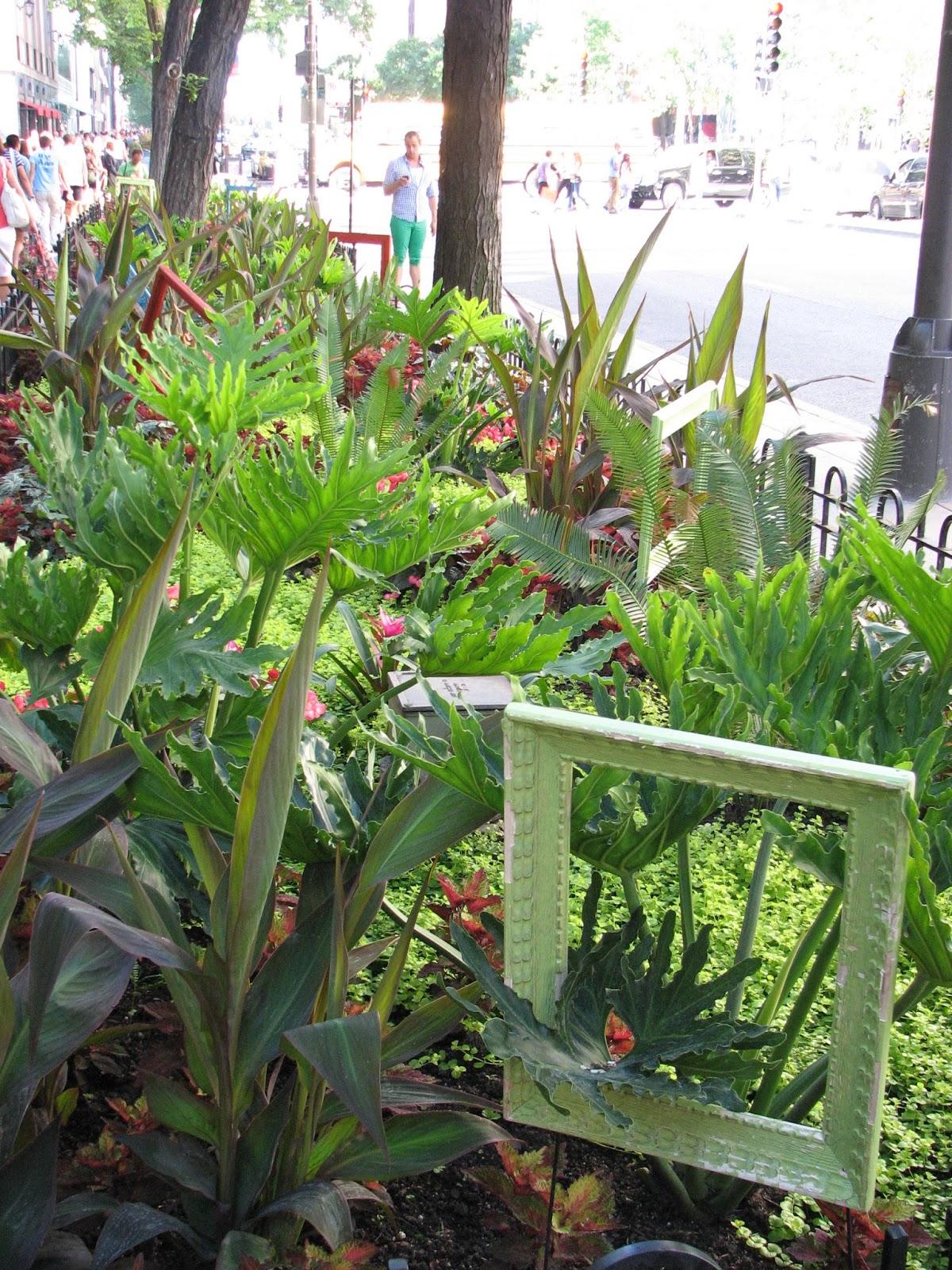 Plant Geek: Garden Frames