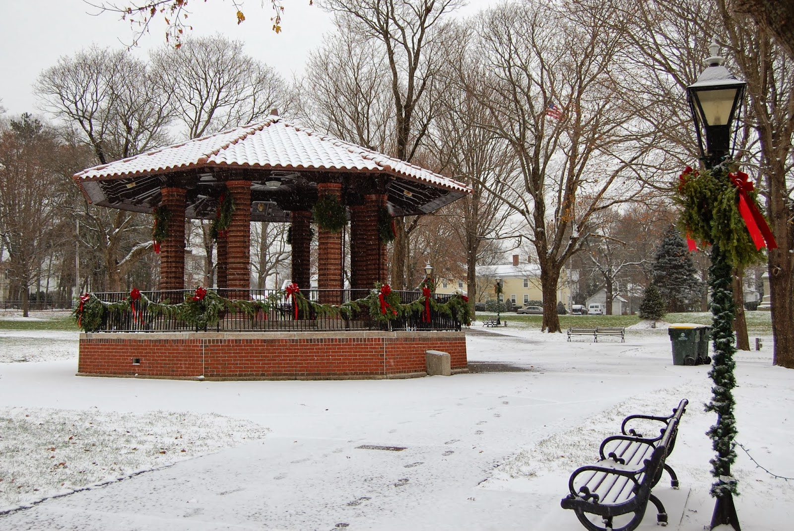Franklin Town Common (in snow)
