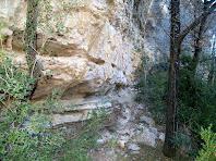 Parets de roca calcària de Sant Bartomeu en el camí a les Baumes del Molí de la Codina