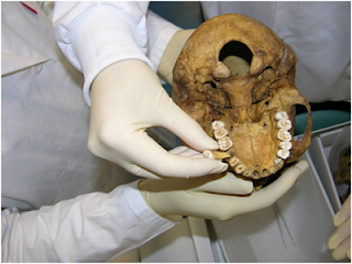 sikat gigi, pasta gigi, mesir kuno, penemuan